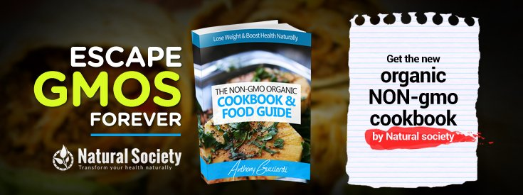 Natural Society Launches Organic Non-GMO Cookbook & Shopping Guide