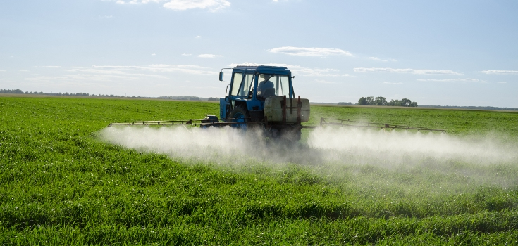 Monsanto's New 'Herbicide-Resistant' GMO Crop Slammed by Food Experts