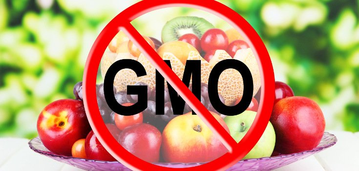 26 Organizations that Support GMO Labeling