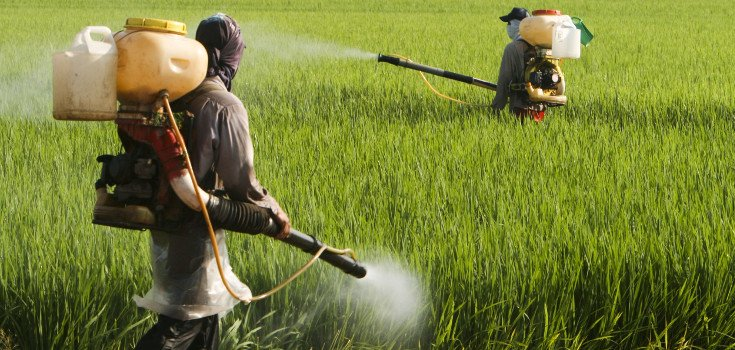 30,000 Doctors in Argentina Demand that Glyphosate be Banned