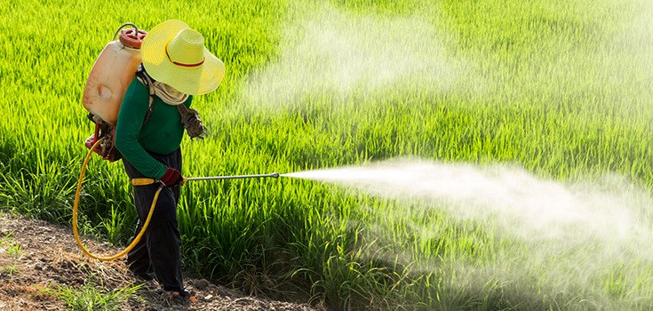 34000 Pesticides and 600 Chemicals Later: Our Food Supply is No Better for It