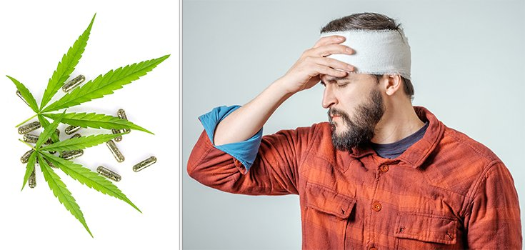 """Cannabis 'Concussion Pill' has """"Enormous Potential,"""" Study Shows"""