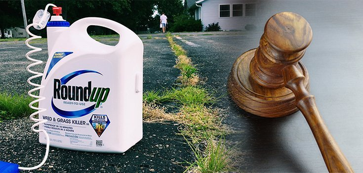 Jury Orders Monsanto to Pay $289 Million in World's 1st Roundup Trial