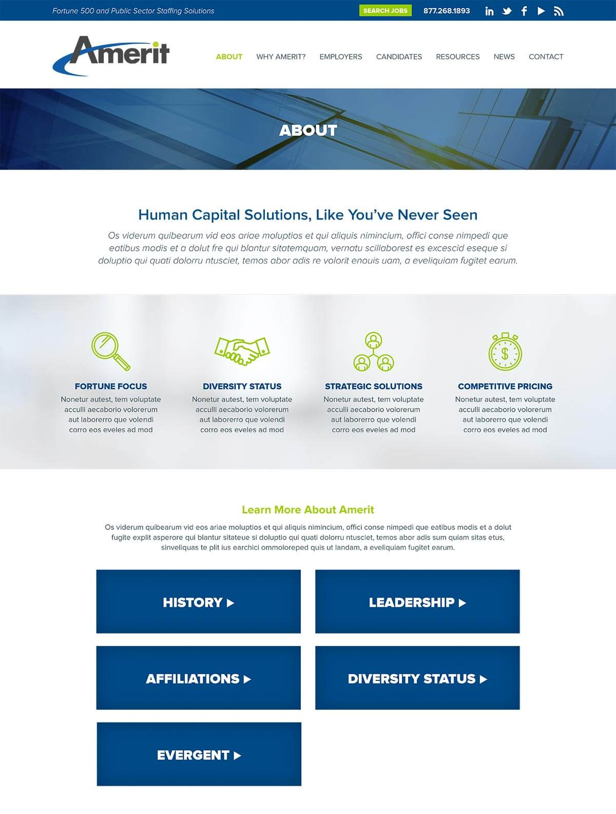 Amerit website about page v2