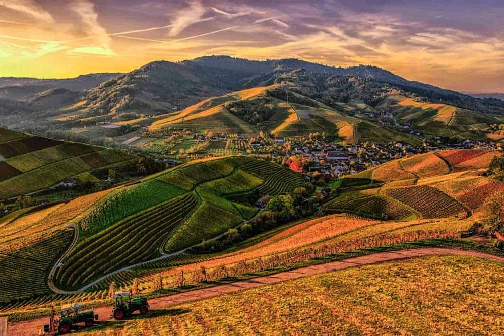 Texture Photography landscape