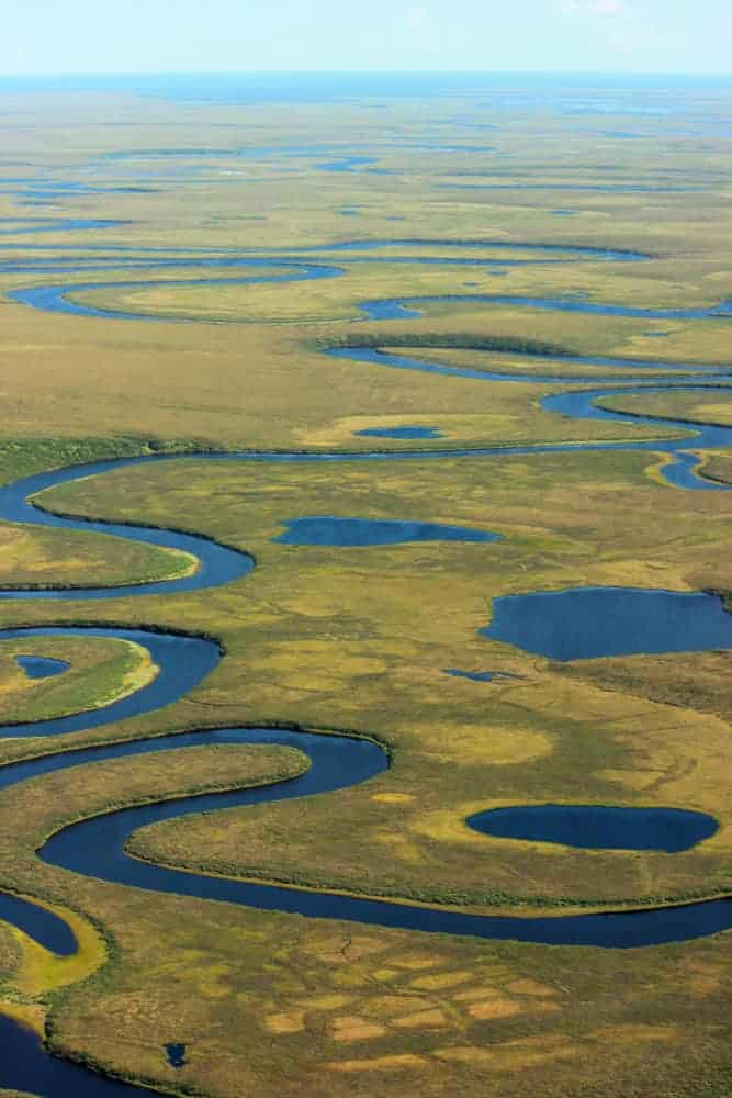 Streams meander on the flat landscape, Bering Land Bridge National Preserve, 2014.
