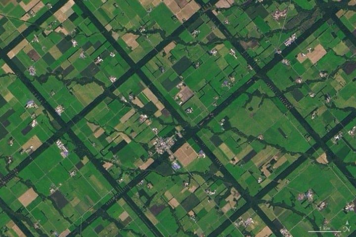 Dark green lines form the forested windbreaks in Hokkaido, Japan. Image: NASA.