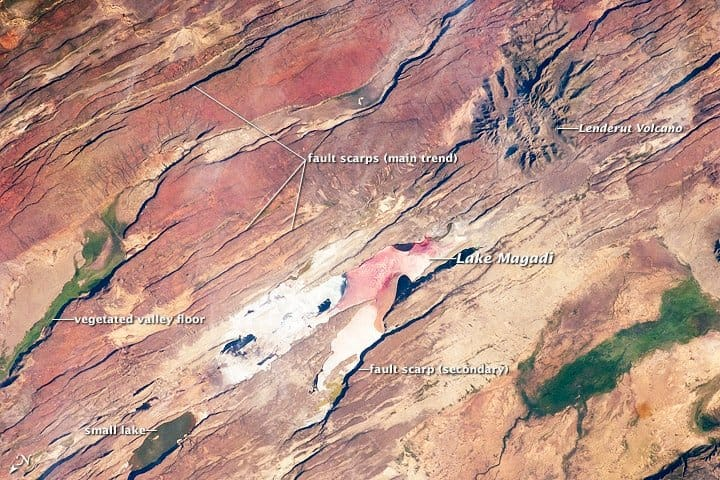 This astronaut photograph of the Eastern Branch of the Rift (near Kenya's southern border) highlights the classical geologic structures associated with a tectonic rift valley. Astronaut photograph ISS030-E-35487 was acquired on January 14, 2012.