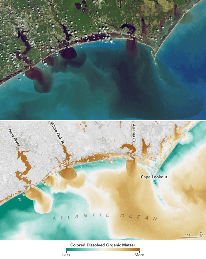 The bottom map combines visible and infrared data from Landsat to reveal the amount of colored dissolved organic matter (CDOM) in the White Oak River, New River, and Adams Creek. Source: NASA