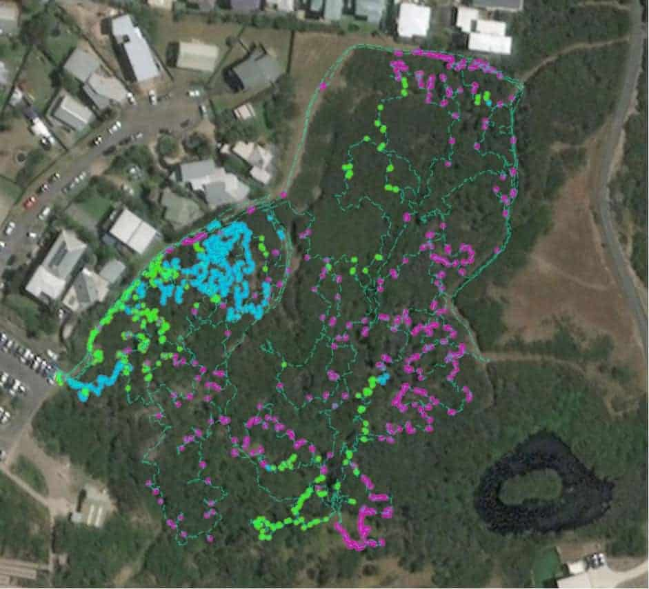 An example of STA logger data in a township bushland reserve during the beta testing phase in late 2019. Map:  Harley Schinagl