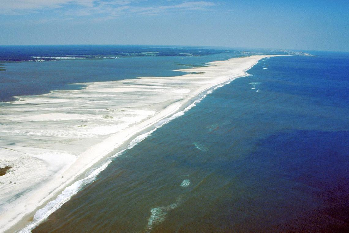 Aerial view of Assateague Island, looking north. Ocean City, Maryland, is visible in the far distance at top. Sinepuxent Bay lies between the island's western shore and the Delmarva Peninsula to the upper left. Photograph taken in 1998.