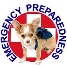 Preparing your Pet for Emergencies & Natural Disasters