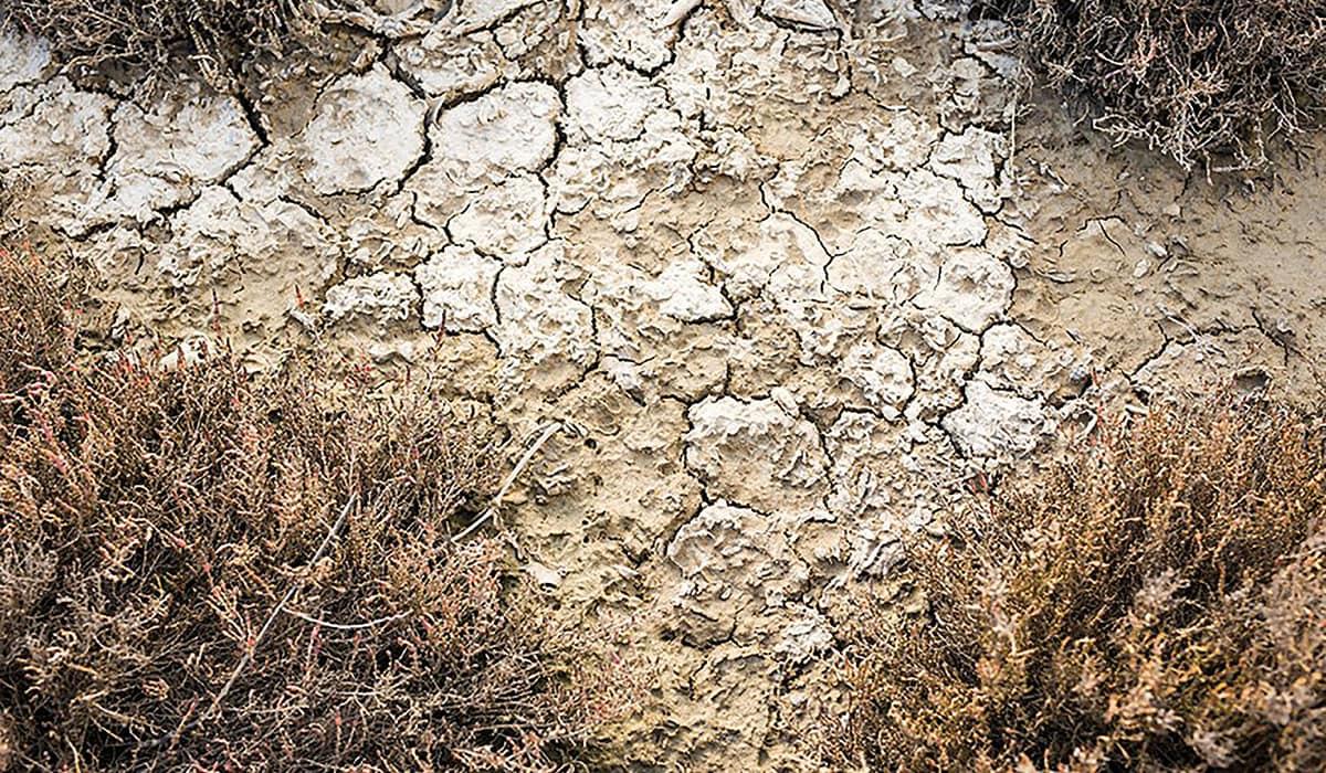 Dry Land Texture Background Image PE7ZHPW