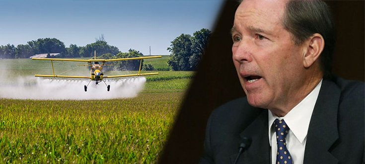 Group of Senators Push for Ban of the Toxic Pesticide Chlorpyrifos