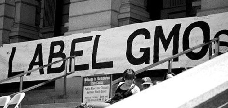 New Bill Would Give Monsanto Immunity and Squash GMO Labeling