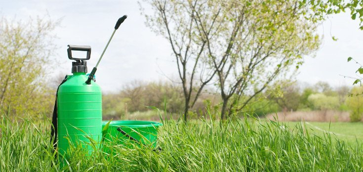 Why the WHO Admits Pesticides Lindane and DDT Cause Cancer