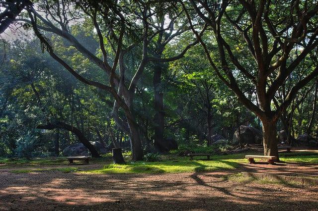 Cubbon Park cycling routes in Bangalore