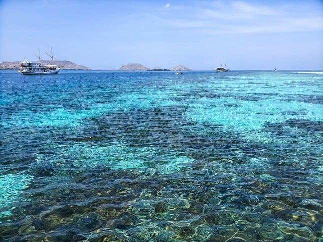 Ocean water with coral during a Komodo tour, and two boats in the background.