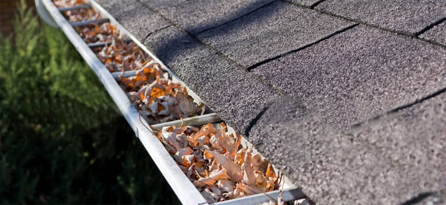 Picture of a clogged gutter