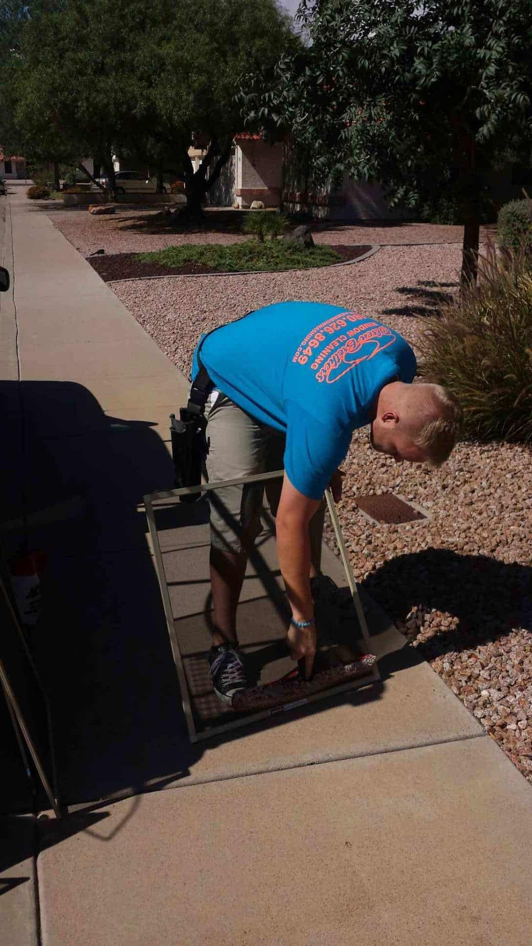 insect bug screen cleaning