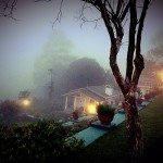 Misty mornings