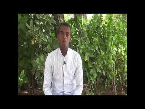 Abdirahman Ahmed Jama