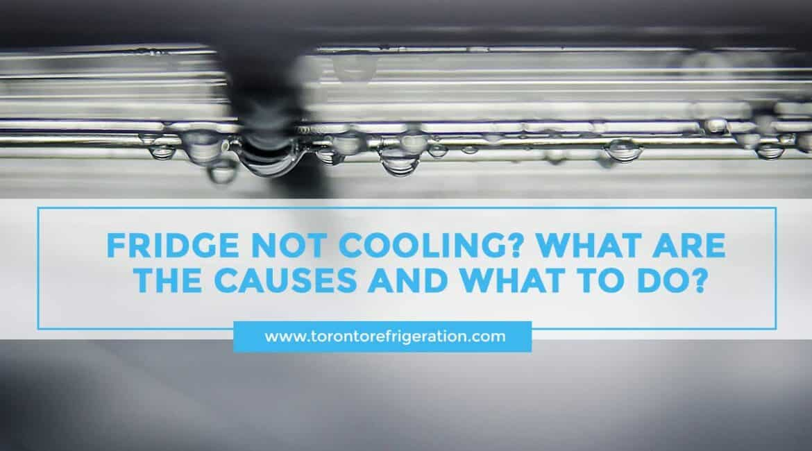 Fridge Not Cooling? What Are the Causes and What to Do?