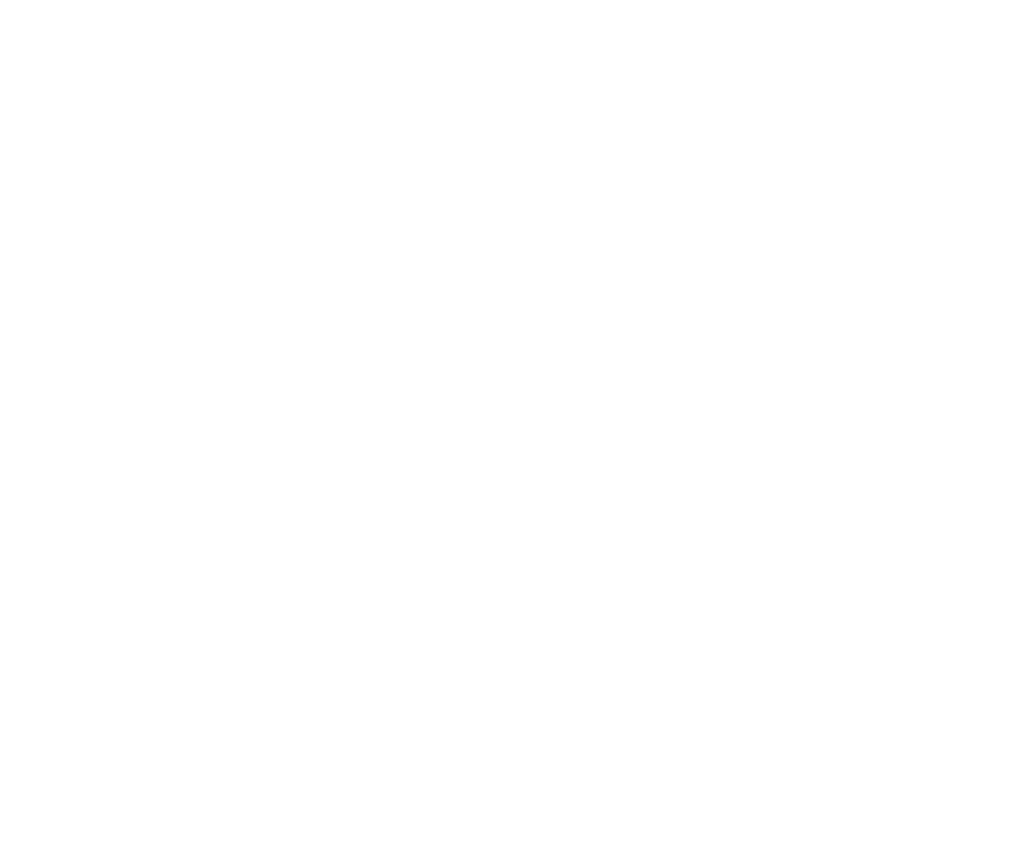 The Tampa Bay Maid Brand