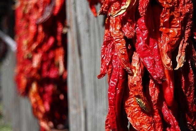 These chilis are on their way to dried perfection. And they look good too!