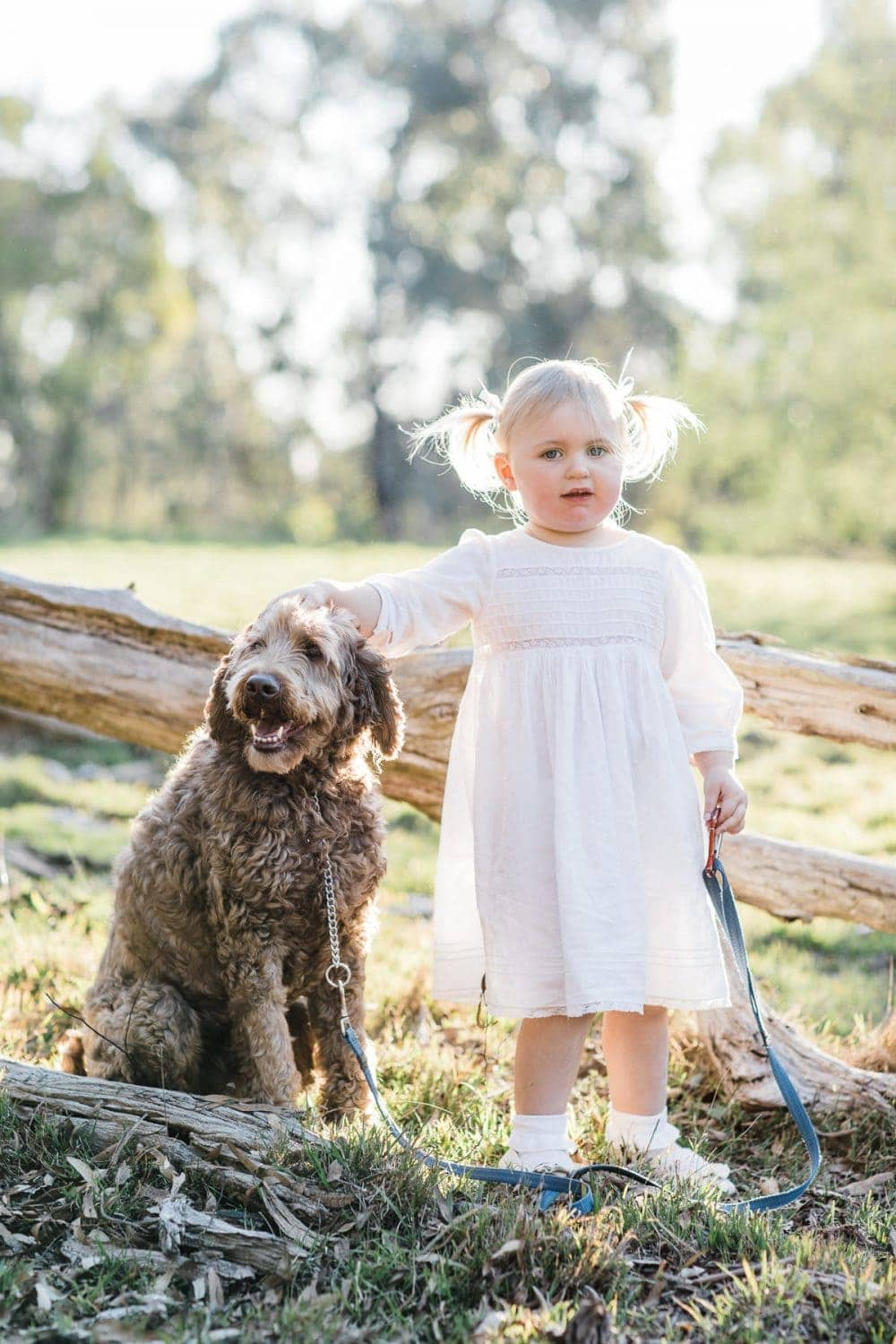 pet photography with kids in melbourne