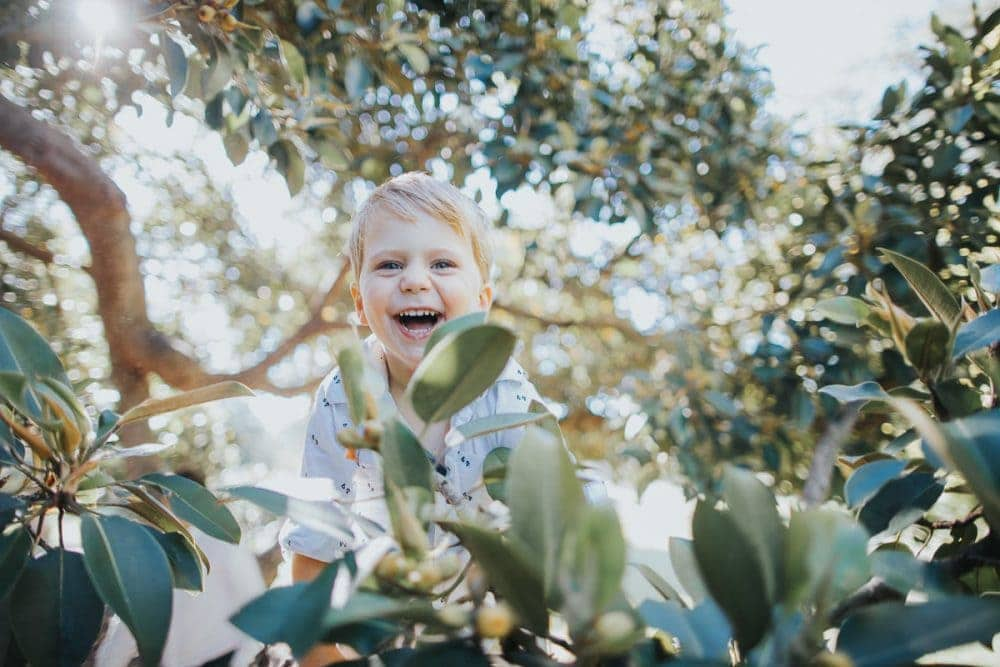 family photo shoots in Brighton - kid laughing while climbing a tree - sun