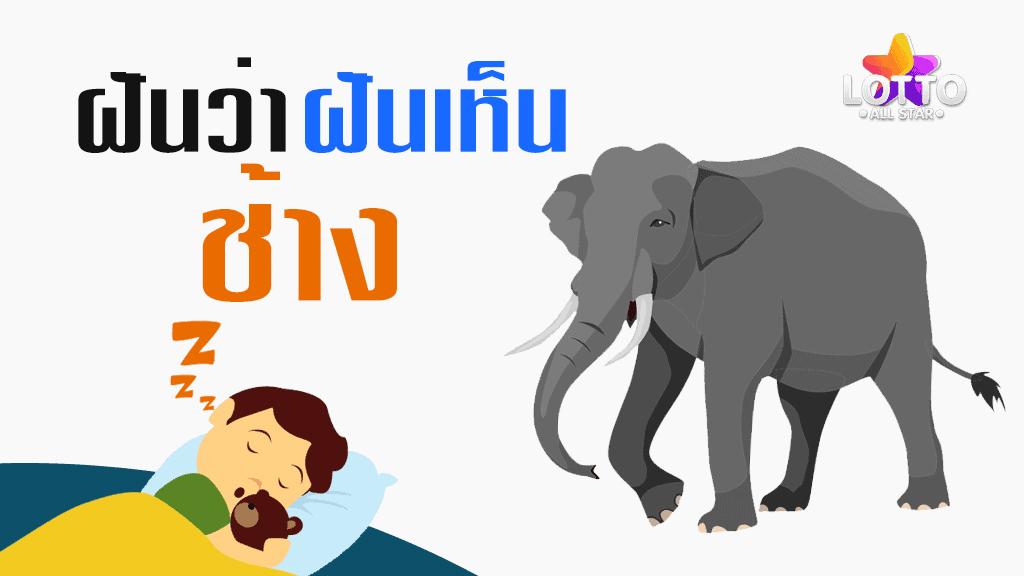 ฝันเห็น ช้าง