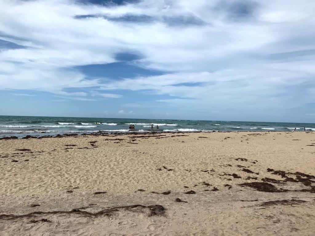 Litoral Piauiense Praia do Coqueiro