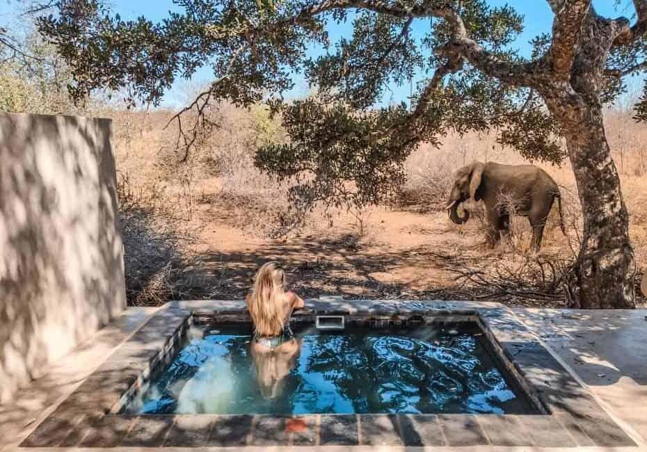 Onde ficar no Parque Nacional Kruger - Melhores hospedagens, lodges e como economizar