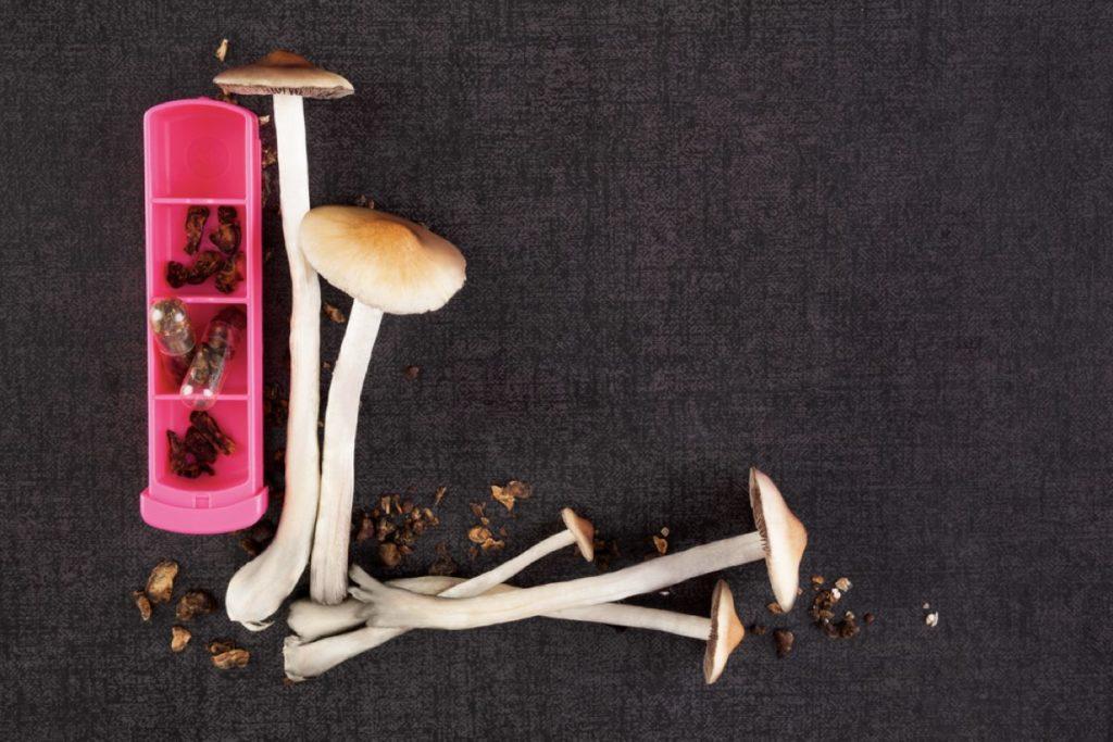 Microdosing on mushrooms