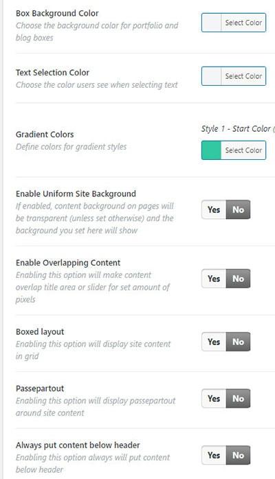 bridge customization options