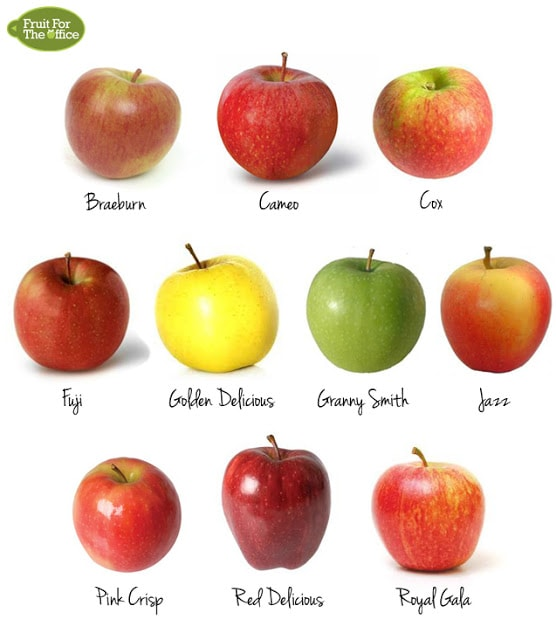 Choose the Right Apple - Baking, Snacking, Salads - The Jewish Lady