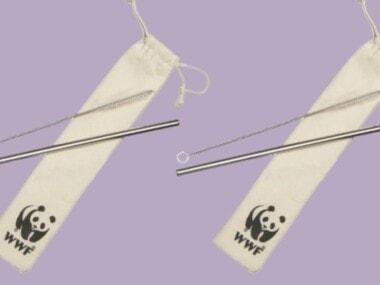 metal straw kit with the world wildlife fund logo on the drawstring bag