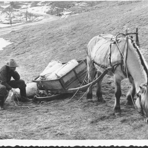 """Reklamebilde: Dette bildet ble brukt i en tidlig reklame for Dalen produktene. Annonsen hadde teksten """"Det lyt nok verta ei Dalen-vogn her óg ... Dalen - alt i vogner og hjul""""."""