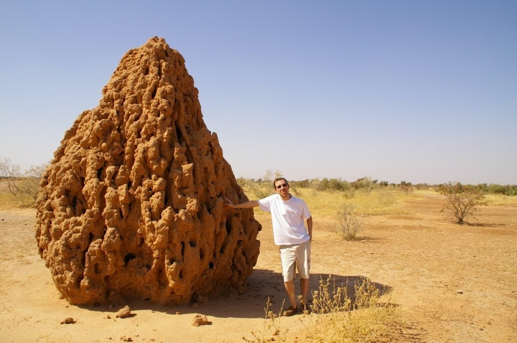 Image: Man standing next to a termite mound in the desert that is taller than he is