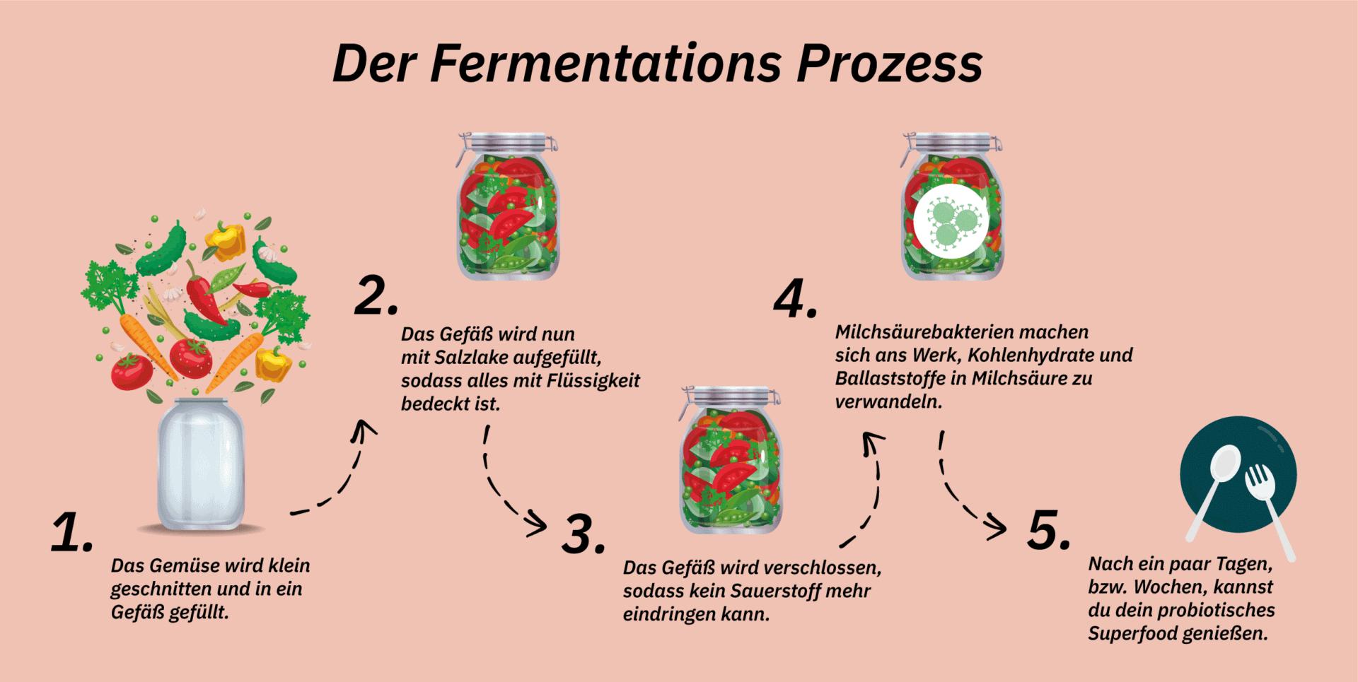 Grafik zum Fermentationsprozess