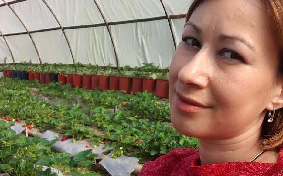 Tamara Dzandzava in her strawberry greenhouse in Abkhazia.