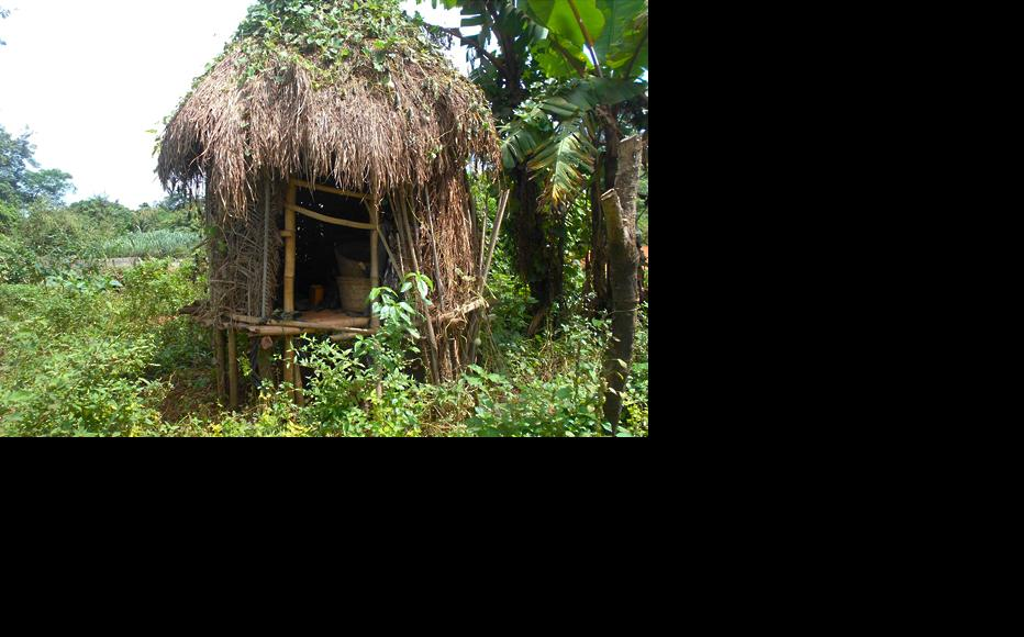 Barns built by farmers for storage in Ibeku, Ogun state. (Photo: Hannah Ojo)