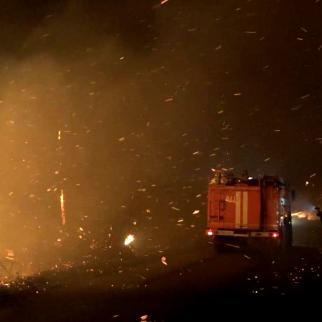 A fire rages on a nut plantation in the village of Lower Barghebi, one of the hardest hit areas by the fires in Abkhazia.