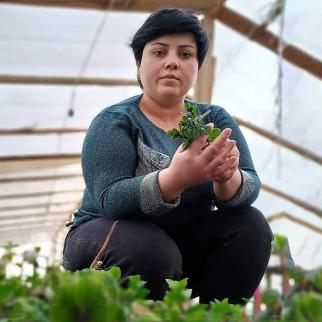 Eka Danelia in her greenhouse.