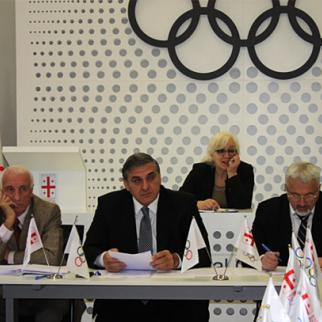 Executive council of the Georgian National Olympic Committee. (Photo: Georgian Olympic Committee)