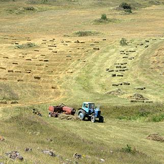 Iranian plans to rent farmland have upset some Armenians. (Photo: Photolure agency)