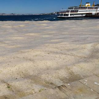 View of the Marmara sea covered in sludge produced by algae as a result of hot weather and pollution.