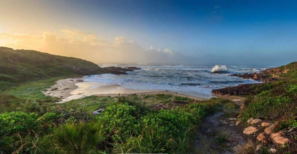 Kingsley-Beach-best-beaches-in-newcastle