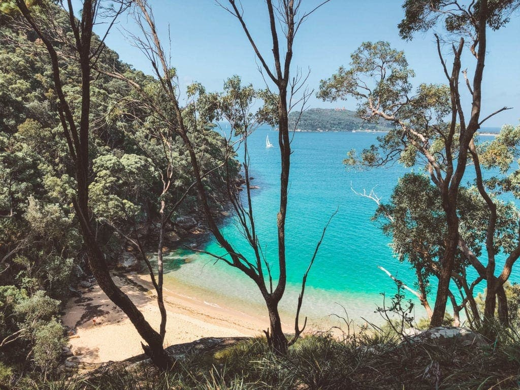 resolute-beach-palm-beach-fun-date-ideas-in-sydney